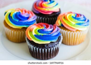 Chocolate and vanilla cupcakes with rainbow creaming