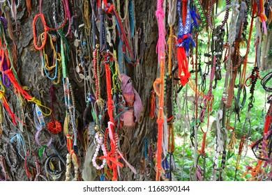CHOEUNG EK KILLING FIELD, PHNOM PENH, CAMBODIA - JUN 25TH, 2018: Tree where the children were killed in Choeung Ek Killing Field, Cambodia, on Jun 25th, 2018