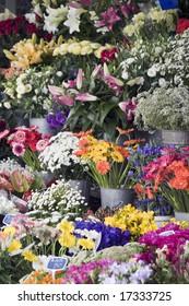 Choice of fresh flowers at an outdoor street market