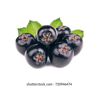 Chokeberry with leaves isolated on white background. Black aronia berries