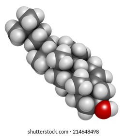Cholesterol molecule. Essential component of cell membranes and precursor of steroid hormones, bile acids and vitamin D. Atoms are represented as spheres with conventional color coding.
