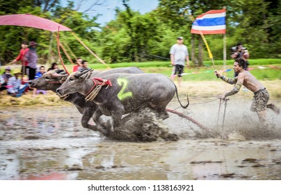 CHONBURI, THAILAND - Motion blurred of buffalo competition in dirt trac Buffaloes racing on July 15, 2018 in Chonburi,Thailand