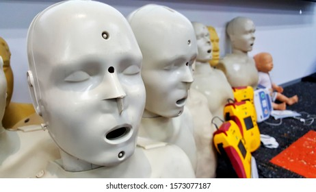 Chonburi, THAILAND Nov 5,2019: Manikin for demonstration of CPR Cardiopulmonary resuscitation for resurrected patients. Doctors use to training how to save the lives of patients who do not breath
