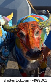CHONBURI, THAILAND - OCTOBER 18, 2013: Decoration Buffalo to Parade of Traditional BUFFALO RACING in Chonburi