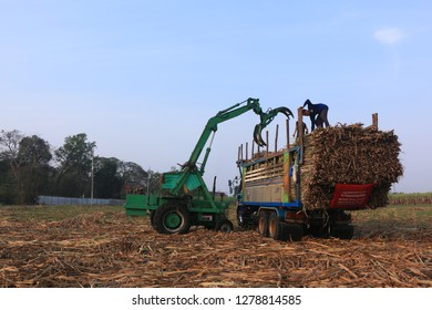Chonburi, Thailand on January 09,2019,Tractors clamping arm is dispatched sugarcane to truck in harvest season