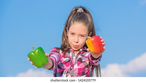 Choose which. Alternative decision concept. Kid girl hold red and green peppers sky background. Kid hold ripe pepper harvest. Child presenting kinds of pepper. Fall harvest homegrown vegetables.
