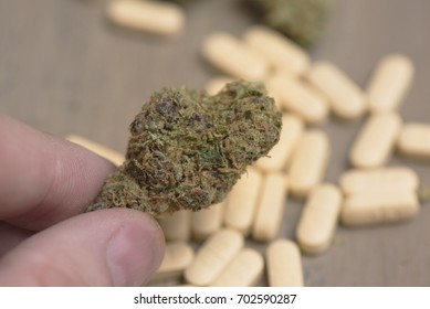 Choosing marijuana bud over conventional prescription pills. Concept of choice and alternative treatments.