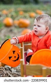 Choosing a pumpkin at a pumpkin patch on Fall day.