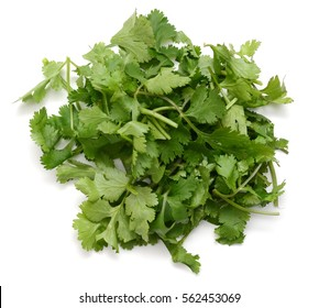 chopped of cilantro isolated on white background