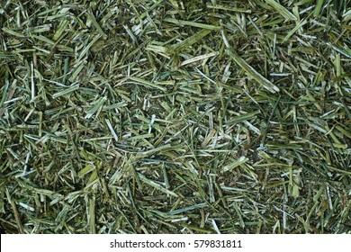 Chopped dried alfalfa for livestock feed.