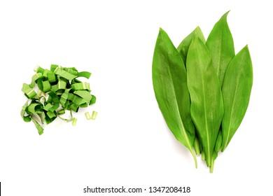 Chopped fresh wild garlic, ramson isolated on white background. Allium ursinum, known as wild garlic, ramson. Isolated on white background.