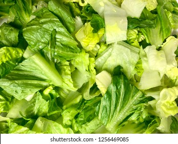 Chopped romaine lettuce filling the frame