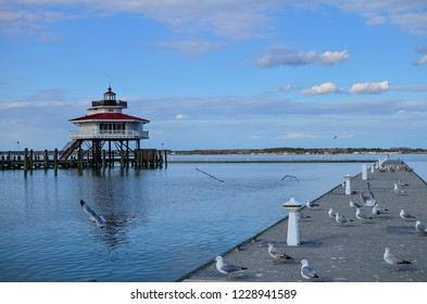 Choptank River Lighthouse in Cambridge Maryland, on Maryland's Eastern Shore also known as Delmarva. Seagulls fly and flock on the nearby pier dock