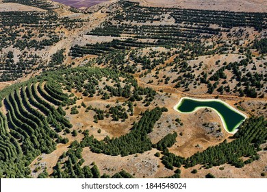 Chouf Natural Reserve - Biosphere. Located on the western chain of mountains in Lebanon, the biosphere contains one of the largest diverse ecosystem in the middle east with huge variety in wildlife