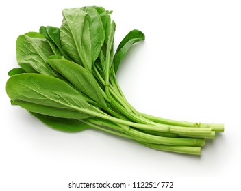 choy sum, chinese vegetable isolated on white background