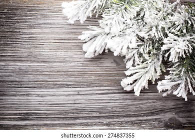 Christams greeting card. Pine tree on the wood ackground.
