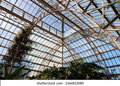 Christchurch, New Zealand - October 16, 2015: The glass conservatory at the Christchurch Botanic Gardens in New Zealand. The glasshouse interior has tropical plants, iron structure and morning light.