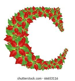 Christmas Alphabet from poinsettia