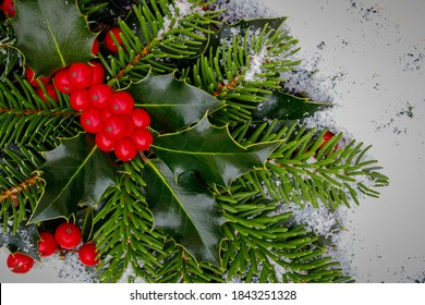 Christmas background, card. Evergreen Holly Bough. Christmas holly red berries with green leaves and fir branches, closeup. Ilex aquifolium Holly green foliage with matures red berries.