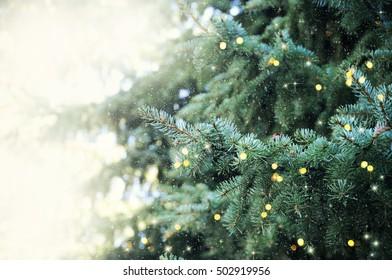 Christmas background. Family holiday. Christmas tree.