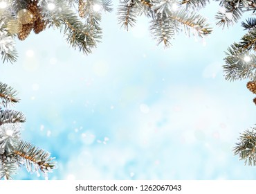 Christmas background with fir tree branch.Merry Christmas and happy New Year greeting card with copy-space.