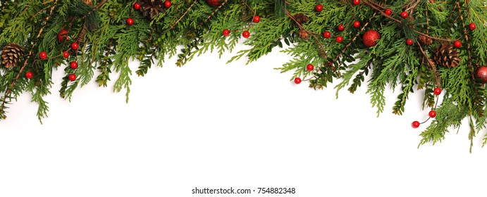Christmas background. Green branches with red berries on white background