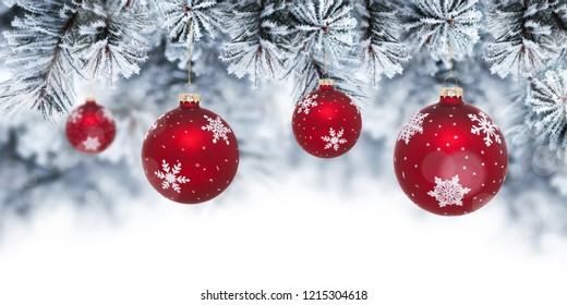 Christmas background with red baubles hanging on pine tree. Banner with copy space