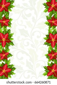 Christmas Background With Red Poinsettia And Holly Leaves Decoration Elements Vertical Banner Border