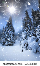Christmas background with snowy fir trees and mountains in heavy blizzard.