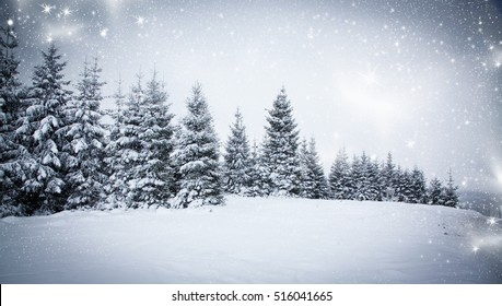 christmas background of snowy winter landscape with snow or hoarfrost covered fir trees - winter magic holiday