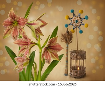 """Christmas background with a symbolic sheaf """"Diduh"""", Christmas star and Hippeastrum (amaryllis) Butterfly Group """"Exotic Star"""""""