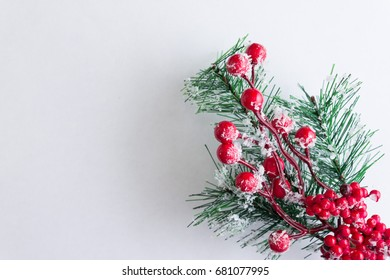 Christmas background with a Christmas tree branch. Christmas time.