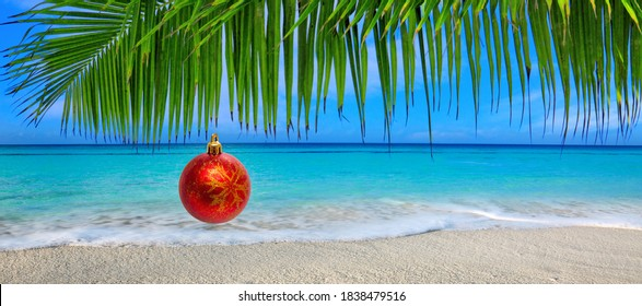 Christmas Ball hanging on a Palm Tree Branch. Travel Background.