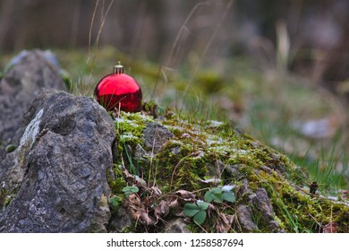 Christmas ball in the wild nature shining a christmas light to all animals - or as a little christmas greeting from santa clause