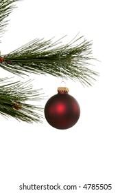 Christmas bauble on pine limb