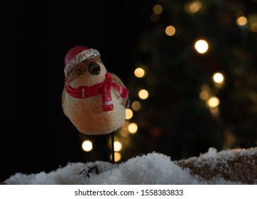 Christmas bird with red hat and scarf