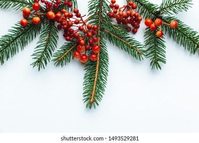 Christmas Tree Top View.Christmas Tree Top View Images Stock Photos Vectors