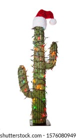 Christmas cactus tree with hat