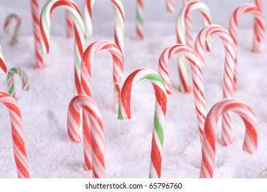 Christmas candy canes in freshly fallen snow