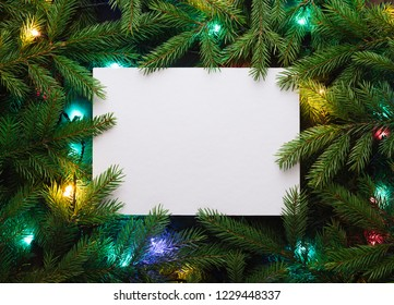 Christmas card for advertising text. Decorative frame of fir branches and Christmas lights