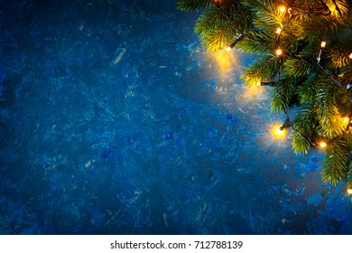 Christmas card. Branch of spruce on a dark blue background