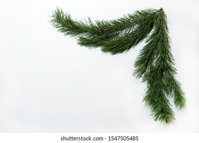 Christmas composition. The pattern is made of pine branches on a white background. Christmas, winter, New year.