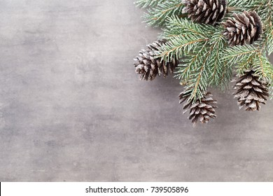 Christmas day decorations on a grey background.