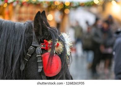 Christmas decor on horse blinders in the center of Prague