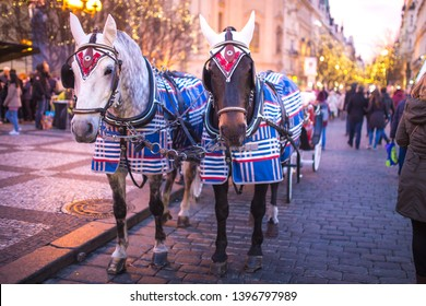 Christmas decor on horse blinders in the center of Prague in the evening