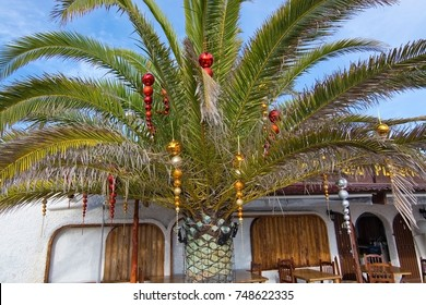 Christmas decorated palm tree with baubles in Ibiza, Balearic islands, Spain