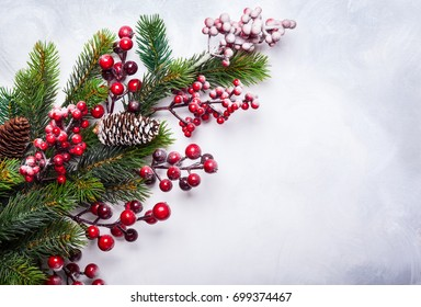 Christmas  decoration background: fir branches and holly berries on light background