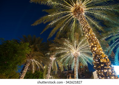 christmas decoration background palm tree.