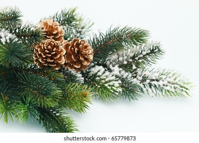 Christmas decoration with Fir branch on white background