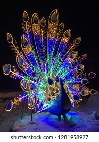 Christmas decoration in the form of a luminous Firebird (peacock) in the evening on the street, the illumination of bright lights.